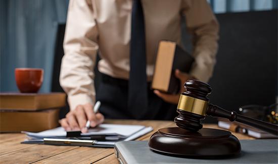 Citação em ação reivindicatória interrompe prazo para reconhecimento da usucapião